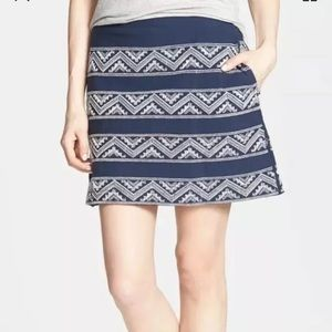 HINGE Anthropologie embroidery Mini Skirt Lined XS
